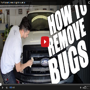 How To Properly Remove Bugs From Your Car