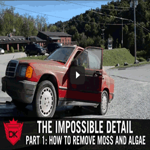 The Impossible Detail Part 1: How To Remove Moss and Algae